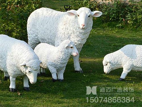 小品-小羊